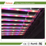 8 PCS를 가진 Keisue LED 성장하고 있는 정착물은 램프를 증가한다