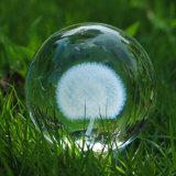 Laser Gegraveerde Kristallen bol met 3D K9 Bal van het Glas voor de Herinnering van de Decoratie Ome