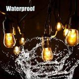 Luzes ao ar livre da corda do diodo emissor de luz de 48 FT por Proxy Iluminação - UL alistado