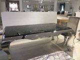 2017 de Moderne Eettafel van de Stijl met Roestvrij staal