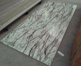Panneau mural en PVC avec la conception de marbre imprimés de haute qualité