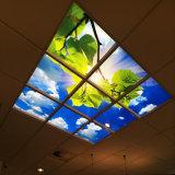 Blue Sky/nuvens brancas do painel de LED de luz para Design de Interiores