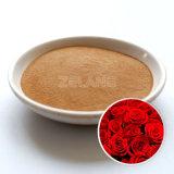 Extrait de fleur rose poudre (4 : 1, 10 : 1, 20 : 1)