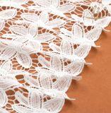 Tessuto del merletto di Raschel dello Spandex di alta qualità