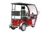 Motociclo Handicapped della rotella di alta qualità 110cc tre