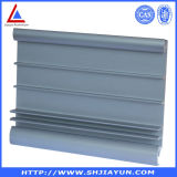 La aleación de aluminio del escaparate parte el perfil de aluminio para la visualización