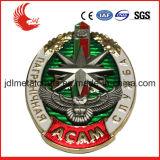 Distintivo professionale di obbligazione del metallo di figura dello schermo di fabbricazione