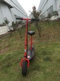 Scooter électrique à deux roues à grande puissance (LT JE300)