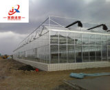 지적인 유리제 온실을 설치해 야채