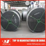 Qualità rassicurante di qualità buona con il sistema di nylon Huayue del nastro trasportatore di prezzi abbastanza competitivi