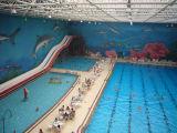 Telhado da piscina do frame do espaço