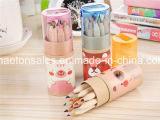 Crayons de couleur en bois dans la ronde Paper Box pour la promotion