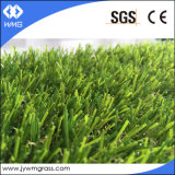 Figura della spina dorsale che modific il terrenoare l'erba artificiale del tappeto erboso
