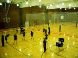 木カラーPVCは屋内バスケットボールおよびバレーボールゲームのための床を遊ばす