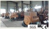 Marcação CE e ISO aprovado 45KW de energia verde conjunto gerador de Biomassa