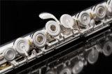 17 ключевых профессиональных Silver флейты производителя