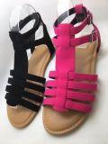 Типы способа, красивейшая конструкция, сандалии женщин, сандалии повелительниц
