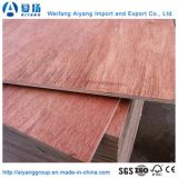 El contrachapado de madera de color rojo para el mercado de Egipto