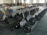 Adult 350W 36V12Ah bicicleta eléctrica de tres ruedas Scooter de movilidad
