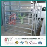 Frontière de sécurité de ferme de bétail de l'Australie/panneau galvanisé de yard de bétail