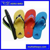 Poussoir coloré de chaussures de PE de poussoirs pour les hommes