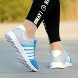 Chaussures de sport de volley-ball de la formation personnalisée