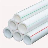 La NP10-PN20 calor preservación PPR el material del tubo de evacuación de 24 pulg.