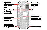 Filtro de ar do cilindro de PTFE/PP