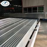 Cruce de tubos de acero caliente Galvanzied Gi andamio tubo hueco del tubo de sección
