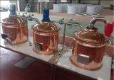 100L Homebrewerのためのマイクロ醸造装置