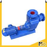 Pompa ad acqua elettrica di irrigazione di innesco di auto