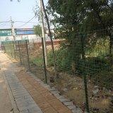 塀のプラントのためのPVC上塗を施してある溶接された金網