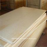 El contrachapado de abedul Okoume comercial Pino Bintangor Embalaje contrachapado de madera contrachapada