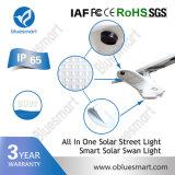 Réverbère solaire certifié par ce de DEL avec la haute énergie