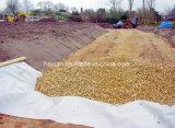 Gazon artificiel de l'herbe géotextiles non tissés avec des prix concurrentiels
