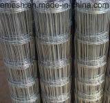 Главное качество Ss 304, сетка 316 скотин злаковика