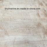 9*1220*2440mm decoração de contraplacado de bétula Natural Madeira contraplacada