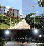 Indicatore luminoso di via solare tutto compreso per la lampada di 30W LED con la batteria del Li