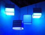 El colgante colgante de interior de Dimmable LED enciende la iluminación para la alameda /Hotel