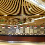Plafond linéaire à rouleaux en aluminium avec poids léger