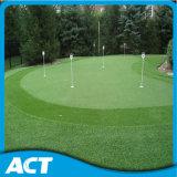 熱い販売のスポーツおよびゴルフパット用グリーンの草G13を美化すること
