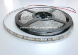 SMD 2835 Highquality LED Strip Hot in Amerikaan