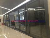 Portello scorrevole di vetro di alluminio di alta qualità domestica con il portello di schermo di obbligazione