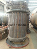 Inteiramente automático & fácil instalar a caldeira de vapor vertical de 750 Kg/H