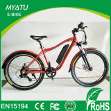 Bicicleta de montanha elétrica 350W 48V, / off Road Dirt Bike