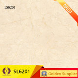 600X600 대리석 돌 Polished 사기그릇 벽 지면 도와 (SL6201)