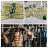 Forti liquidi Nandro Decanoate dell'olio degli steroidi anabolici per guadagno del muscolo