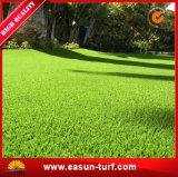 8-10 años de surtidor artificial siempre verde de la hierba