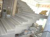 床または壁または階段装飾のための贅沢な銀製灰色の大理石の平板のタイル