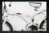 Bike Ce складной электрический (LWEB-L2004F)